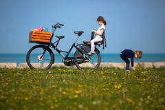 Dandelion Break (Philocycler) Tags: flowers bike canon children relax spring child bokeh lakemichigan depthoffield dandelions cargobike childphotography chicagoist fr8 chicagolakefront dutchbike canonef200mmf28l childtransportation canoneos5dmarkiii workcyclesfr8