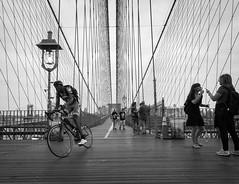 (Mark William Brunner) Tags: street new york bridge people bike bicycle brooklyn wire manhatten