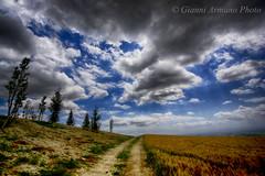 La strada del grano (Gianni Armano) Tags: del la photo san strada italia nuvole foto valle 15 piemonte giugno gianni alessandria grano bartolomeo 2016 armano stupende