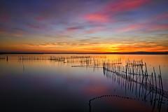 Cielito lindo (Anto Camacho) Tags: sunset sky lake seascape valencia reflections landscape waterscape albufera comunidadvalenciana longexpoure valenciancommunity bigstopper
