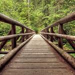 Kopetski Trail Bridge thumbnail