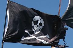 pirate flag (lisafree54) Tags: white black skull flag free pirate crossbones eyepatch jollyroger cco freephotos