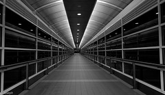 To the other side (josephteh) Tags: leadinglines perspective walkway glass blackandwhite monochrome ceiling night symmetry