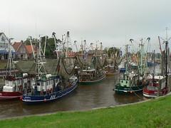 fishing harbour Greetsiel (achatphoenix) Tags: greetsiel port leybucht eastfrisia germany 1388 hafen harbour fischerdorf fishingvillage fischerort ostfriesland lowersaxony shrimps chalutier fischkutter