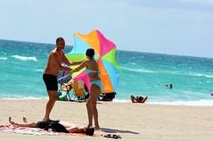 Bikini Umbrella Girl  Mission Accomplished (Andy Arecco) Tags: from boy beach girl umbrella florida south mommy jr bikini hollywood blanket junior wife hubby laying receiving