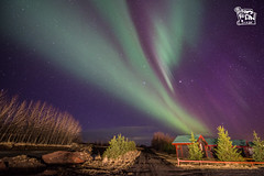 Northern light (ShengRan) Tags: landscape lights iceland nikon aurora northern borealis d600