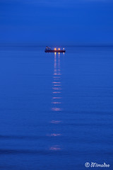 ship at night (Mimadeo) Tags: ocean blue light sea sky color reflection water silhouette night landscape evening ship transport vessel cargo illuminated container transportation shipping nauticalvessel