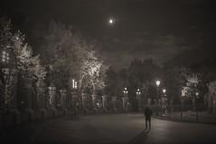 City. Night. A lone passerby. (Margo, just Margo ...) Tags: thechallengefactory fotocompetitionbronze herowinner ultraherowinner friendlychallengessweep photographyforrecreationeliteclub celebritiesofphotographyforrecreation photographyforrecreationclassic fotocomptitionsilver