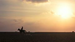 Marina (Vilvesh) Tags: light people horse beach silhouette sunrise canon photography rays marinabeach chennai canon100mm 2ndlongestbeach