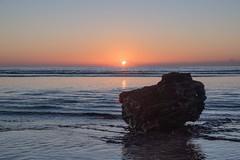 Sunrise at longreef, Sydney. Follow me on Instagram @nettletonphoto  (alexnettleton93) Tags: sunset sky sun reflection water rock clouds sunrise golden coast still flickr colours sydney australia ripples amateur longreef