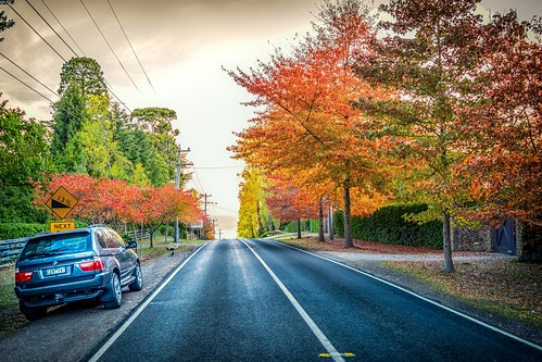 Mt Macedon Autumn Colours -25