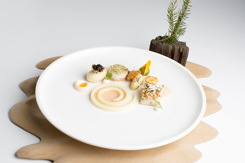 Visgerecht Nederlands team Bocuse d'Or Europe 2016