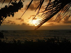 Redescobrindo Alagoas (thiagoalves_mcz) Tags: brazil sol praia beach nature brasil hotel natureza domingo litoralnorte alagoas manha japaratinga albacora hotelalbacora