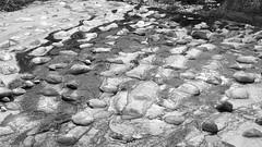 Great Virtue Is Like Water (Taichung, Taiwan) (rightway20150101) Tags: bw water creek stream taiwan taichung