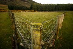 V Fence (Costigano) Tags: ireland irish green field grass canon fence landscape eos farm friday wicklow