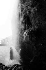 Manikyadhara Falls, Chikmagalur (Smevin Paul - Thrisookaran !! www.smevin.com) Tags: travel india mountain saint trekking paul photography waterfall shrine hill peak falls trail both muslims sufi pilgrimage baba highest hindus manikyadhara budan smevin thrisookaran smevins chikkamagalurchikmagalurchikkamagalurubiketripseptember2015bulletroyalenfieldmullayanagiriwesternghatsbababudangiri