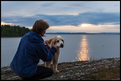 From Larkollen, Norway. (Eline Lyng) Tags: evening landscape nature sunset sea coast larkollen norway dog animal pet canine people retriever golden goldenretriever leica leicasl sl aposummicron 50mm summicron norwegiannationalday 17thofmay littledoglaughedstories aposummicron50mmf2
