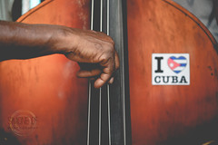 I <3 Cuba (Simone Della Fornace) Tags: travel music playing man tourism closeup hand sony cuba tourist player instrument cuban doublebass traveldestination a7rii