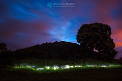 Dowth at midnight on St. John's Eve (mythicalireland) Tags: tree monument night clouds landscape twilight ancient historic torch bluehour mound myth cairn afterglow passagetomb dowth midsummersaintjohnseve