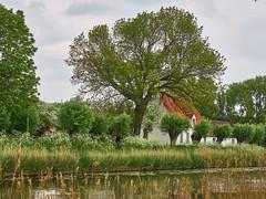 Damme house on the canal (wellingtonandsqueak) Tags: belgium c1 damme