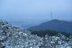 TaipeiSnow day (Iyhon Chiu) Tags: city winter mountain snow cold nature landscape snowy taiwan taipei taipei101        xindian 2016 101 sindian    newtaipeicity
