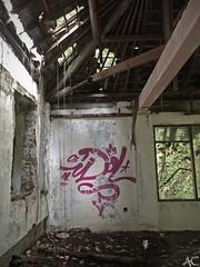 (global.local) Tags: bali streetart building art abandoned nature indonesia graffiti wallart urbanart amusementpark spraypaint graff abandonedplaces naturewins wallporn graffitiporn balistreetart