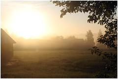 Aamuvalo / Morning Light (Mina von M) Tags: maaseutu idylli fields finland countryside 2016 summer night morning light summerlight pellot juhannus aamu aamuvalo kesy maisema landscape midsummernight keskuu june