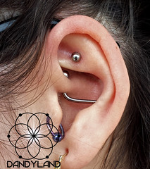 Daith to Conch Industrial