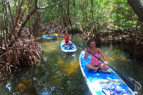 4-22-15-Norman-and-Family-lido-mangrove-tunnels 6