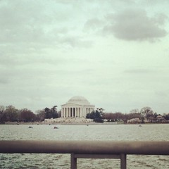 4/7/15 Jefferson Memorial (Karol A Olson) Tags: square dc washington squareformat rise jeffersonmemorial tidalbasin cherrytreeblossoms apr15 iphoneography instagramapp uploaded:by=instagram