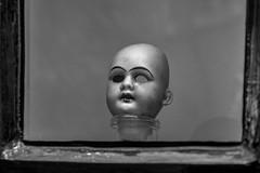 eerie (stevefge) Tags: nijmegen spooky heads macabre