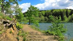 Jubachtalsperre (impossiblejoker) Tags: trees nature water canon germany landscape deutschland wasser natur nrw landschaft bume talsperre kierspe jubach