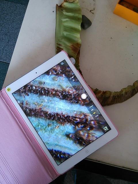 iPad黏顯微鏡_02