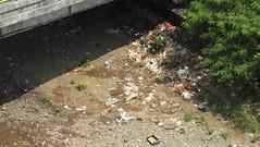 sampah6 (anton_ardyanto) Tags: di bogor lingkungan masalah sampah