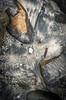 Receding tide (photo obsessed) Tags: seascape australia newsouthwales oceania murramarangnationalpark batemansbayarea