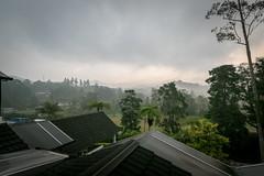 Rooftop lines (stratman (2 many pix and busy)) Tags: tanahrata cameronhighlands efs1022mmf3545usm canonphotography hotelsandresorts eos7dmarkii casadelarosahotel