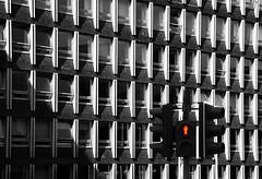Do Not Cross (albireo 2006) Tags: traffficlights donotcross crossing edinburgh traffic blackwhitephotos blackandwhite blackandwhitephotos blackwhite bw bn nb pb windows argylehouse