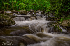 Middle  Prong 3 (Tony Phillips Photography) Tags: summer nature water river landscape outdoors scenery tennessee tremont littleriver greatsmokymountainsnationalpark middleprong tremontroad