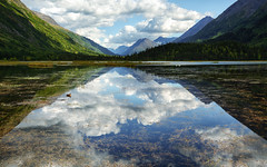Valley Views (Brian Truono Photography) Tags: blue trees plants lake mountains reflection bird nature water grass alaska clouds landscape duck pond shadows surface calm valley sterling hdr highdynamicrange seward chugach ternlake chugachstatepark moosepass