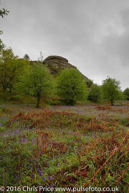 Blackinstone Rock, Dartmoor