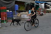"""Pathum Thani (g e r a r d v o n k เจอราร์ด) Tags: artcityart art asia asia"""" asian canon city colour expression eos earthasia fantastic flickraward lifestyle ngc newacademy outdoor totallythailand photos people reflection stad street this travel thailand thai transport bicycle bike dogs unlimited uit urban vehicle whereisthis where yabbadabbadoo flickrsbest 攝影發燒友"""