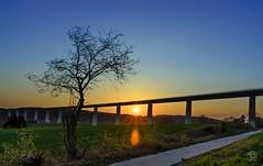 Sonnenuntergang an der Ruhrtalbrücke (jennifer.stahn) Tags: sunset sun tree river nikon sonnenuntergang sundown jennifer sonne ruhr ruhrgebiet baum ruhrpott ruhrtalbrücke stahn d7000