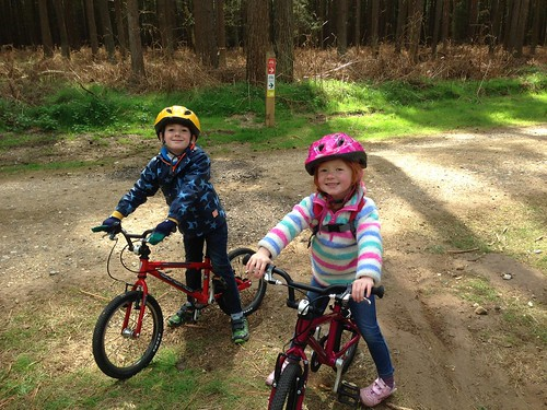 Family ride at Thetford Forest