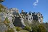Rochers de Roquesaltes (Michel Seguret Thanks for 11,8 M views !!!) Tags: france nature rock nikon rocks natur natura stein rocher rochers d800 aveyron calcaire causses roquesaltes caussenoir michelseguret saintandrédevezines