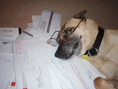 You think doing your taxes suck now? Wait till you win the Louisiana Film Prize! That $50,000 in cash is going provide quite the delightful filing headache. www.LaFilmPrize.com