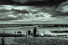 Salty's Revenge (iratebadger) Tags: sea england sky people water monochrome silhouette clouds skyscape person iso100 coast seaside nikon rocks image harbour seagull north scene wharf nikkor cobbles cloudporn eastcoast staithes skyporn d7100 northyorkshirecoast nikond7100 iratebadger