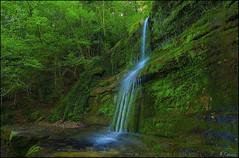 Doble salto. (antoniocamero21) Tags: color verde foto sony den girona catalunya bas rocas hostalets