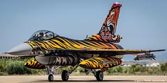 Turkish tiger (NTM 2016) (Ignacio Ferre) Tags: turkey airplane nikon fighter aircraft military tiger zaragoza f16 viper avin tigre nato otan tigermeet fightingfalcon turkishairforce lezg