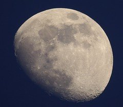 June Moon (Jim Mullhaupt) Tags: moon lunar sky earth night background wallpaper outside light jimmullhaupt photo flickr geographic picture pictures camera snapshot photography nikoncoolpixp900 nikon coolpix p900 nikonp900 coolpixp900