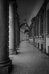 Bologna e i suoi portici (Francesco Luglio) Tags: bologna portici colonnato